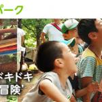 練馬区近郊で夏休みに子供を遊ばせるお勧めのスポットをご紹介します!(光が丘プレーパーク)