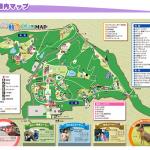 練馬区近郊で夏休みに子供を遊ばせるお勧めのスポットをご紹介します!(埼玉県こども動物自然公園)